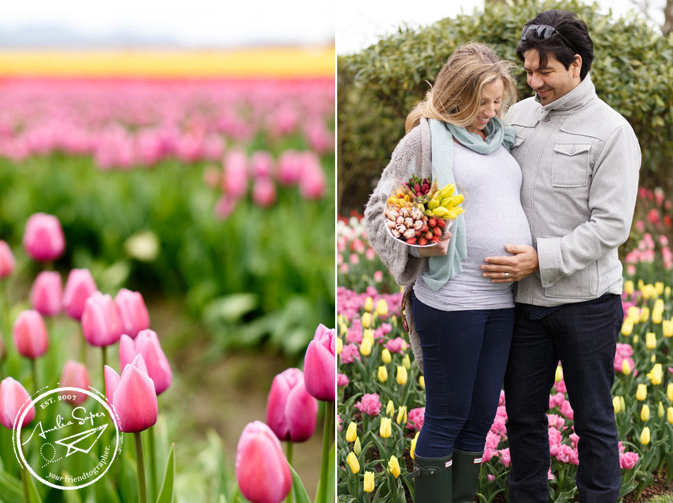 Skagit Valley Tulip maternity