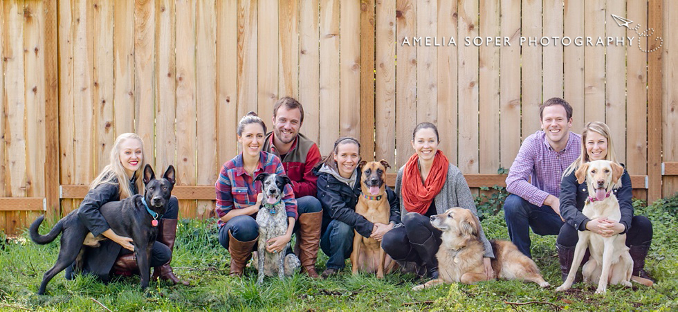 Family Fido Fun | Multi Dog Photo Session | Seattle, WA