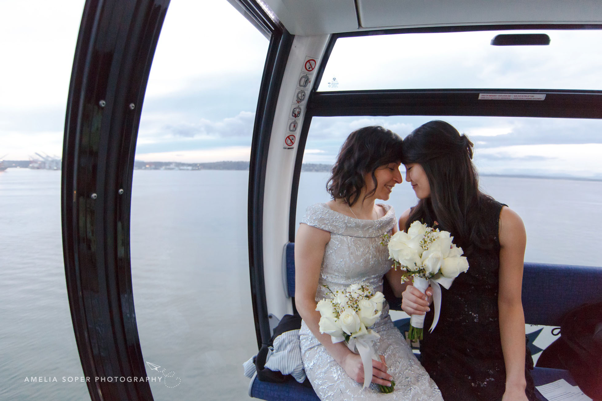 seattle waterfront elopement