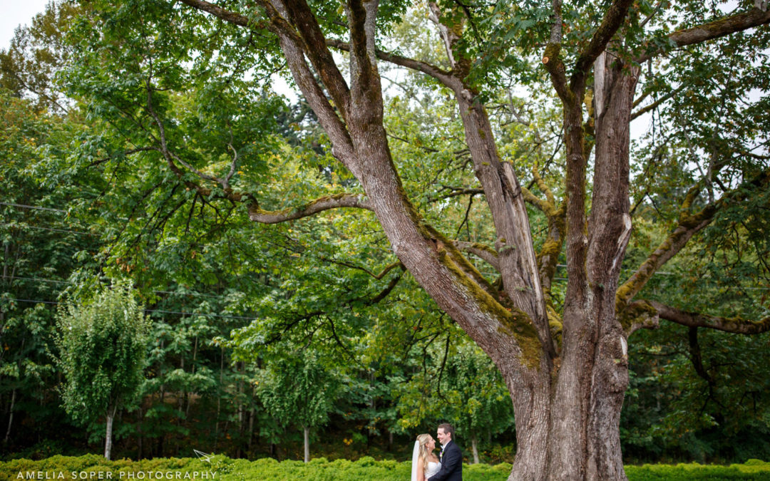 Alex + Dan's Januik Winery Wedding in Woodinville, WA