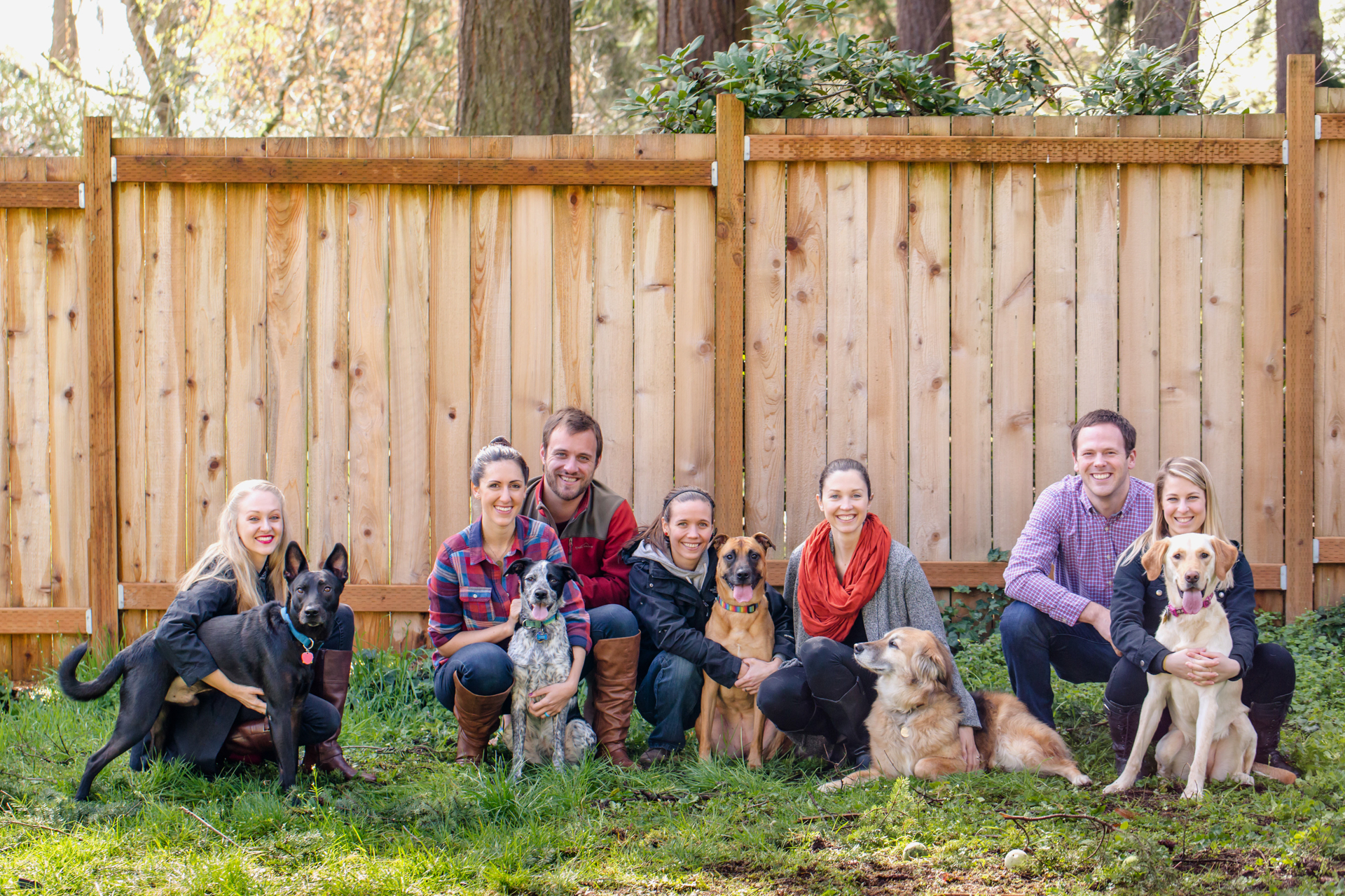 multi-dog-portrait-with-people