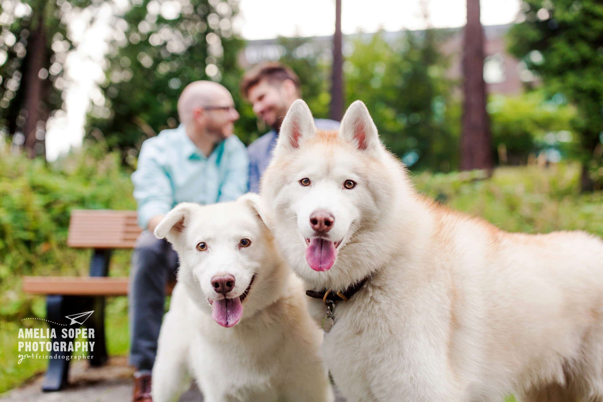 PNW engagement with husky dogs, same sex engagement in Bothell