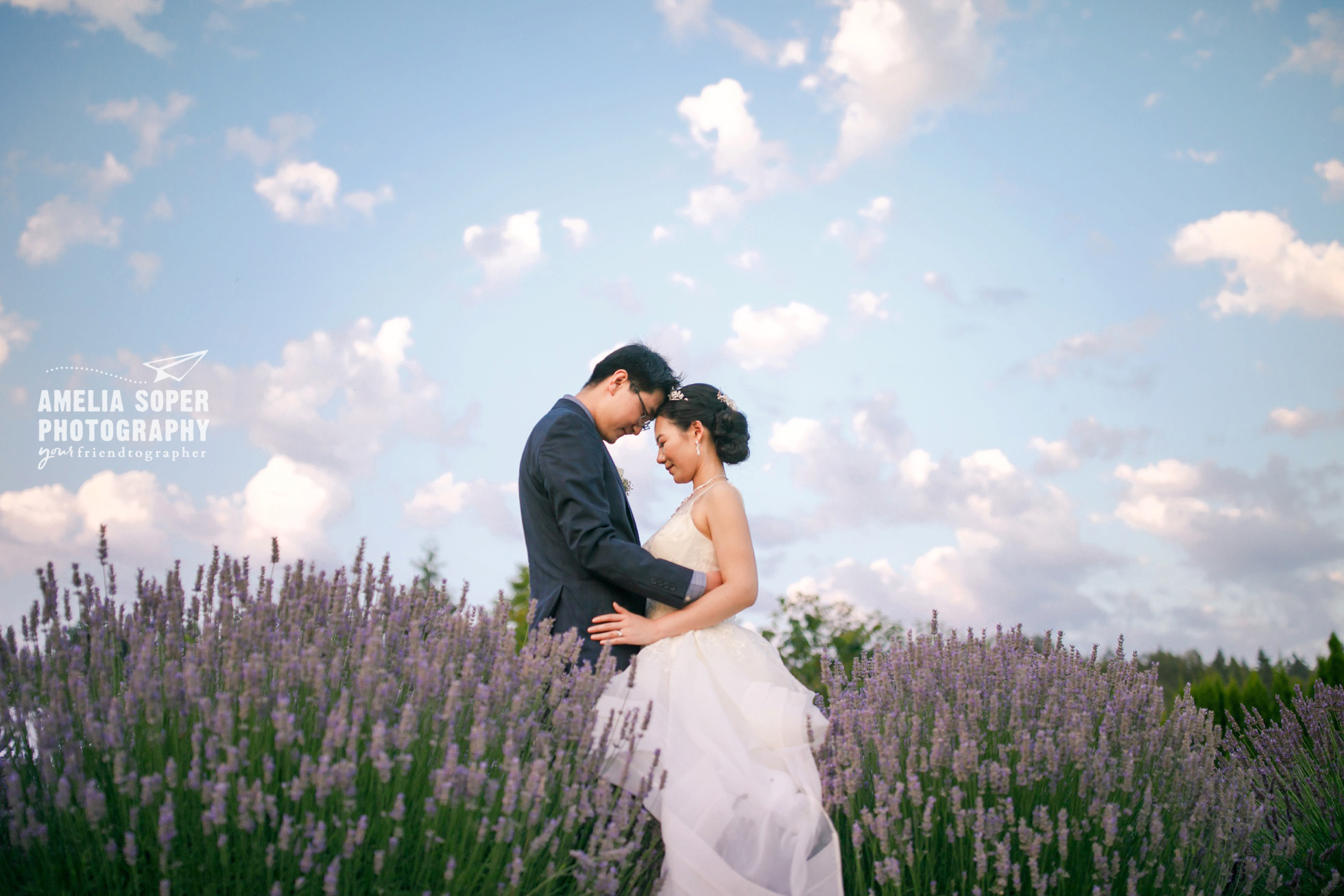 Woodinville Lavender Farm Wedding, Washington State