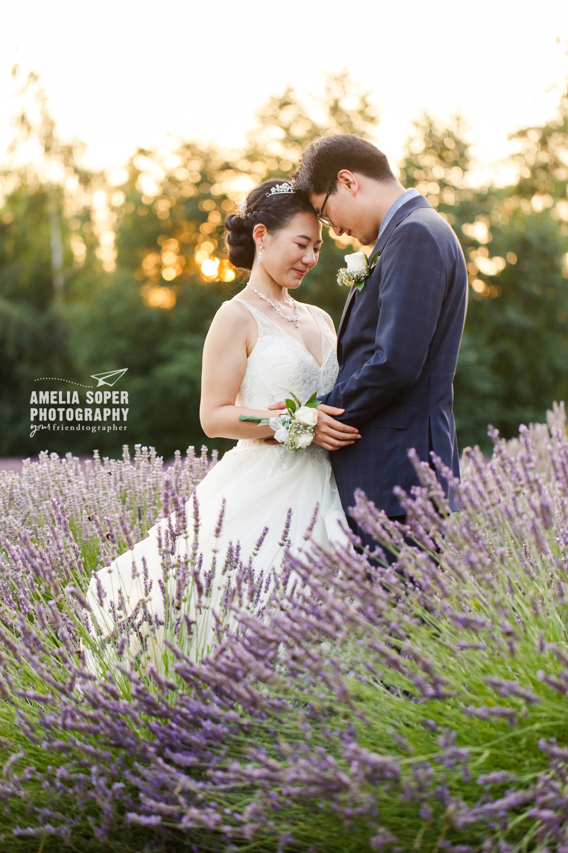 Woodinville Lavender Wedding, Bride and Groom in Lavender field